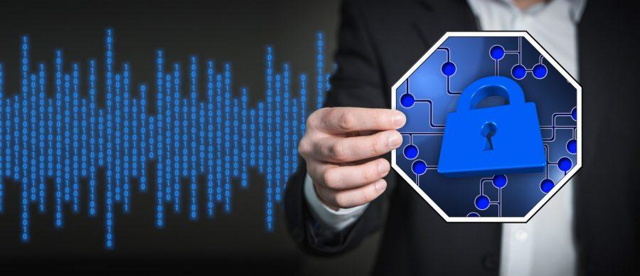 I bakgrunden datagrafik i blått. I förgrunden en anonym manlig silhuett som håller en ikon med ett tydligt blått hänglås.