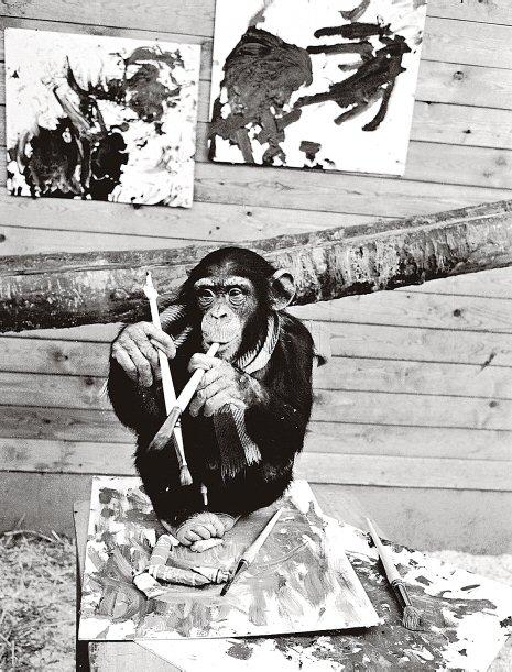 En apa med pensel i handen och ett antal kladdiga målningar framför sig.